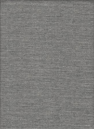 Aster Grey